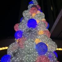 クリスマスツリー -岡田光世